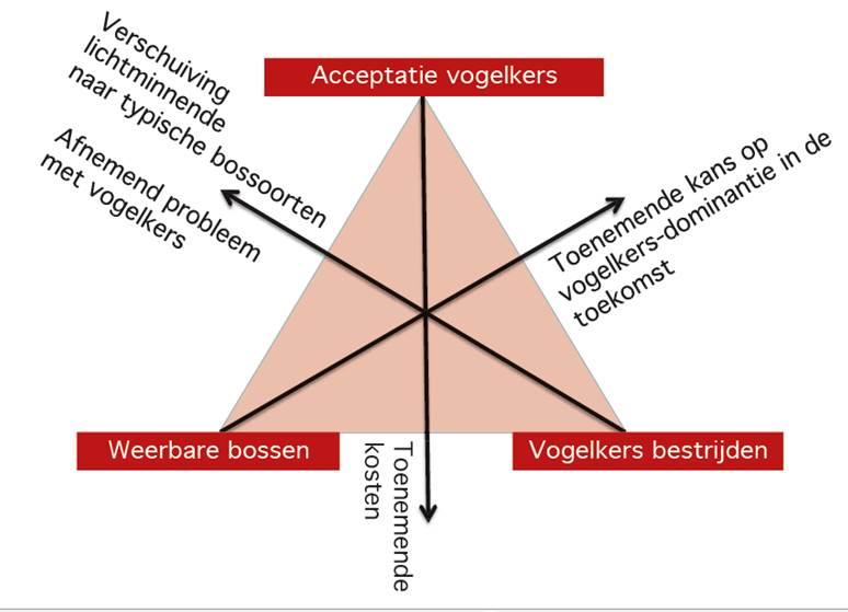 Beheerstrategie driehoek bosbeheer bij vk